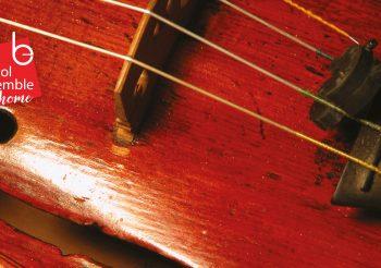 Bristol Ensemble At Home